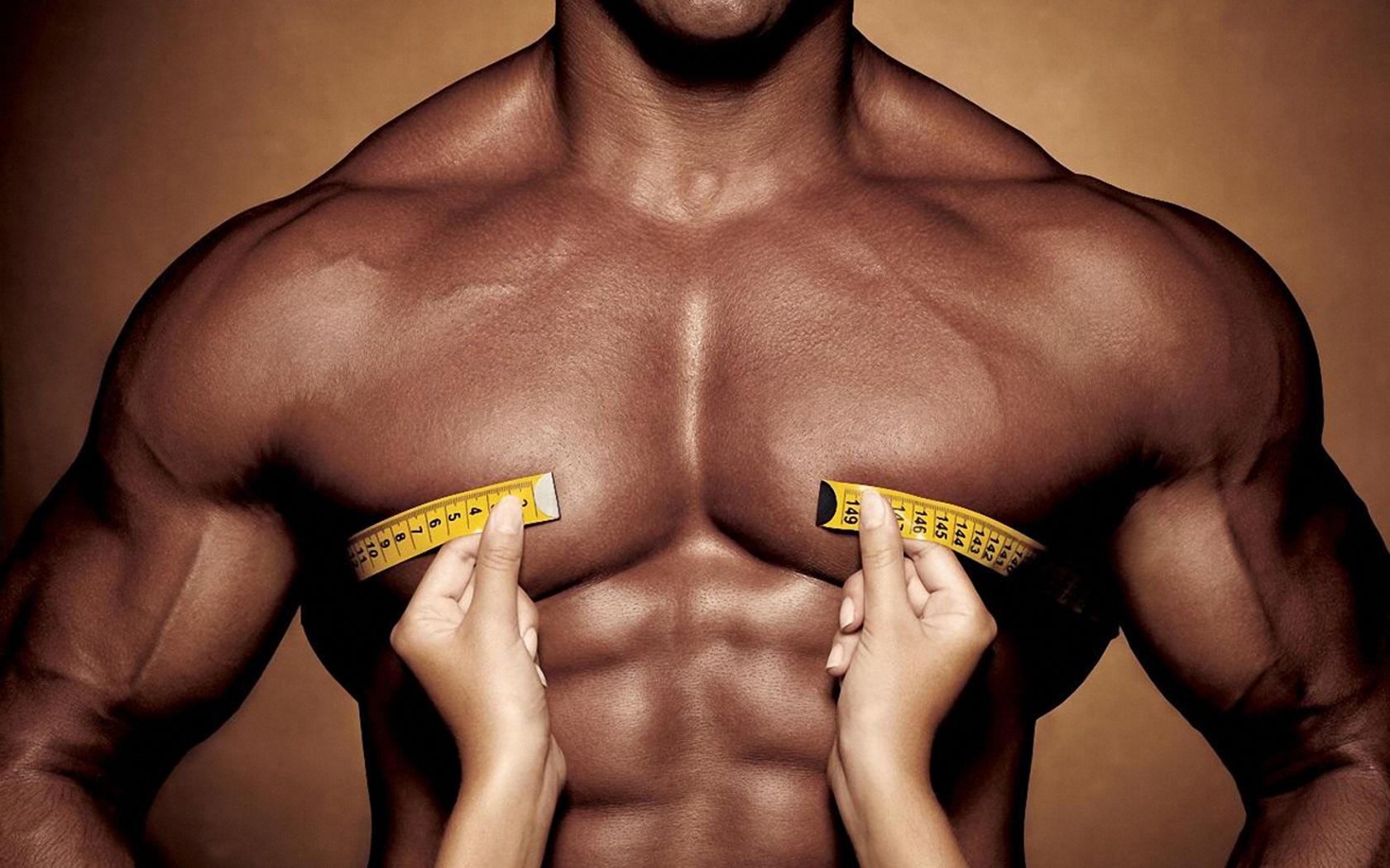 body-muscles-torso-1680x1050