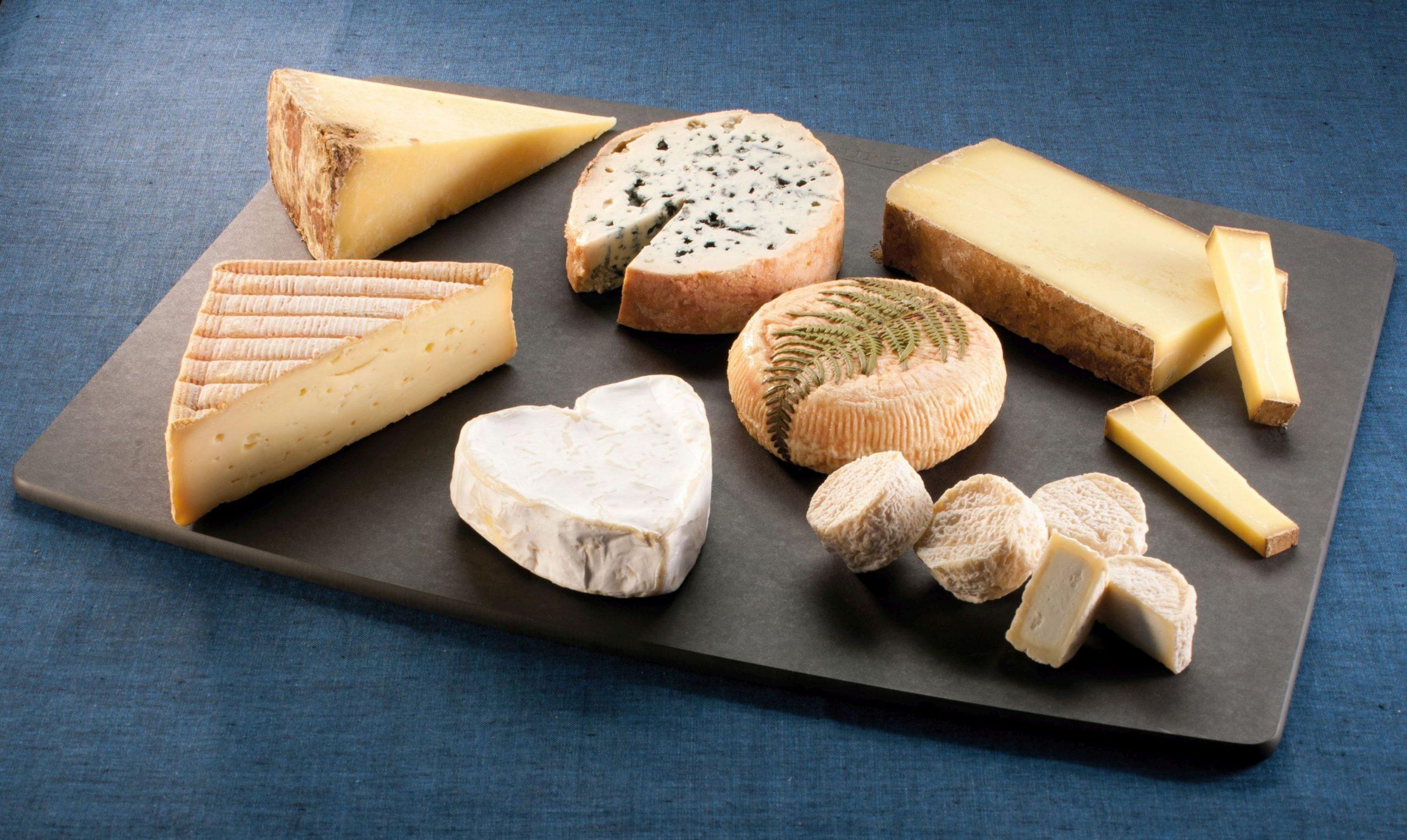 法國芝士分類當中包括新鮮芝士(Fresh Cheese)、柔皮白芝士(Soft Cheese with White Rind)、柔皮洗浸芝士(Soft Cheese with Washed Rind)、藍芝士(Blue Cheese)、半硬質芝士(Semi-Hard Cheese)、硬質芝士(Hard Cheese)、山羊芝士(Goat Cheese)及加工芝士(Processed Cheese)。