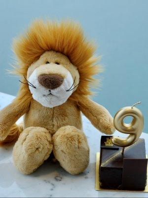 Lion Pierre Plush Toy 小獅Pierre玩偶